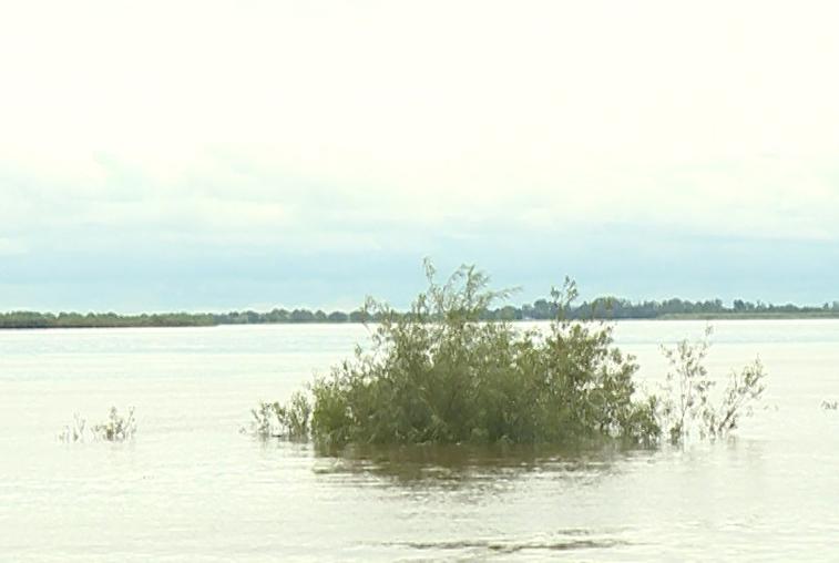 В Приамурье отменен режим ЧС из-за паводка