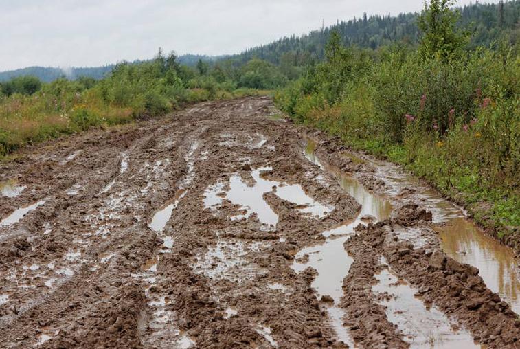 Хлебовоз не смог проехать к сельчанам по размытой дождями дороге