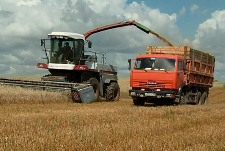 Аграрии Завитинского района стремятся собрать уцелевший после дождей урожай