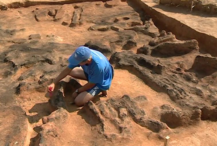 Археологи изучают древнее поселение в Свободненском районе