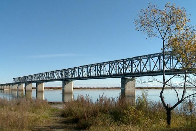 Для моста через Зею в Благовещенске разработают проект ремонта