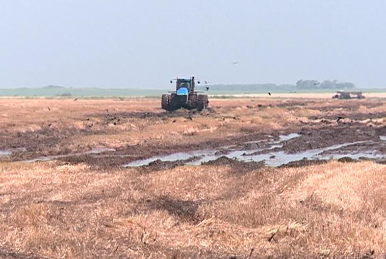 Пострадавшие от паводка амурские аграрии получат 400 миллионов рублей