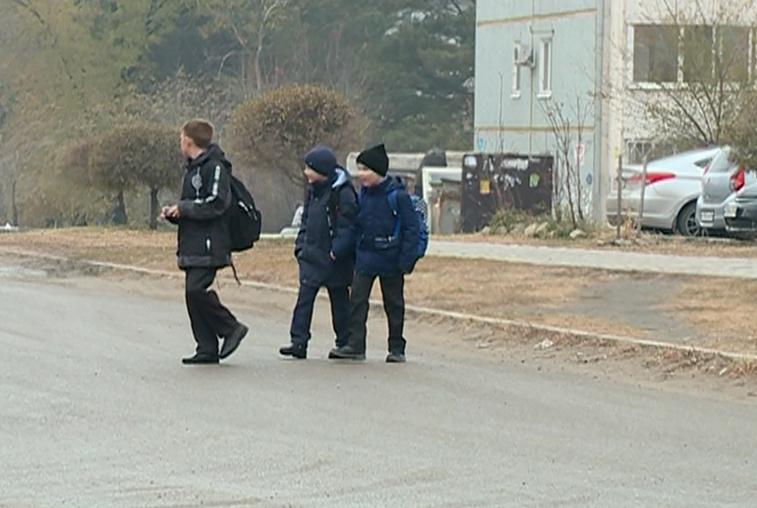 Дорога к чигиринской школе вызвала нарекания у властей и общественников
