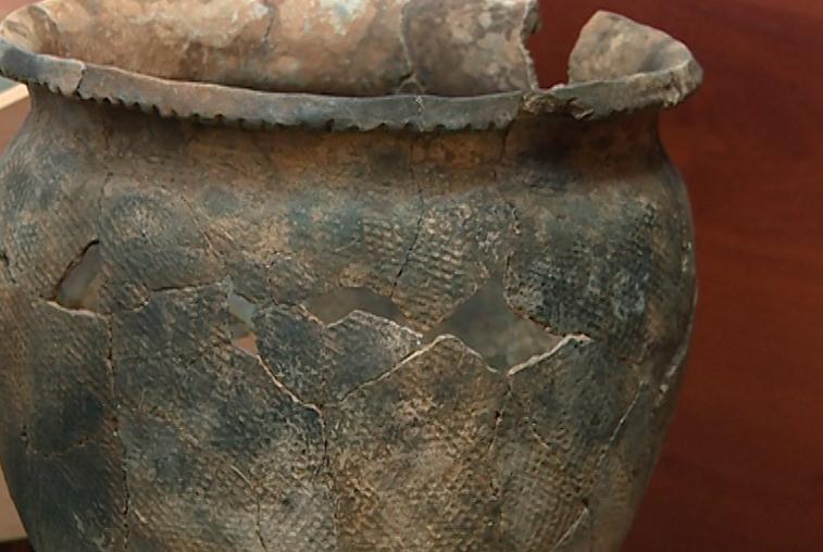 Уникальные находки обнаружили археологи на месте древнего поселения вблизи Свободного