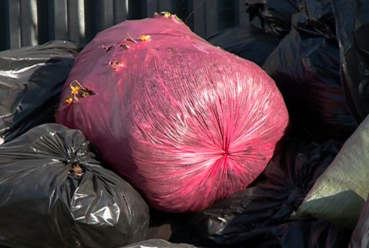 Жителям частного сектора будут раздавать мешки для сбора мусора