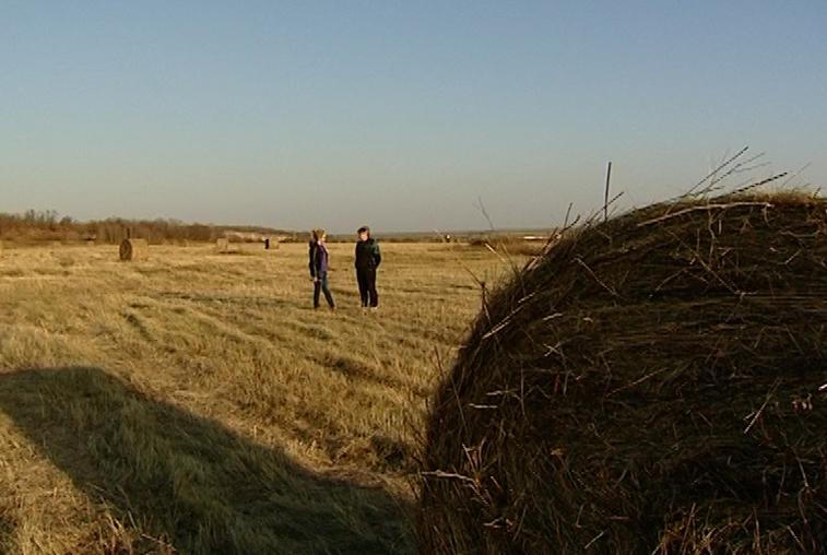 Первые получатели гектаров должны отчитаться об использовании земли
