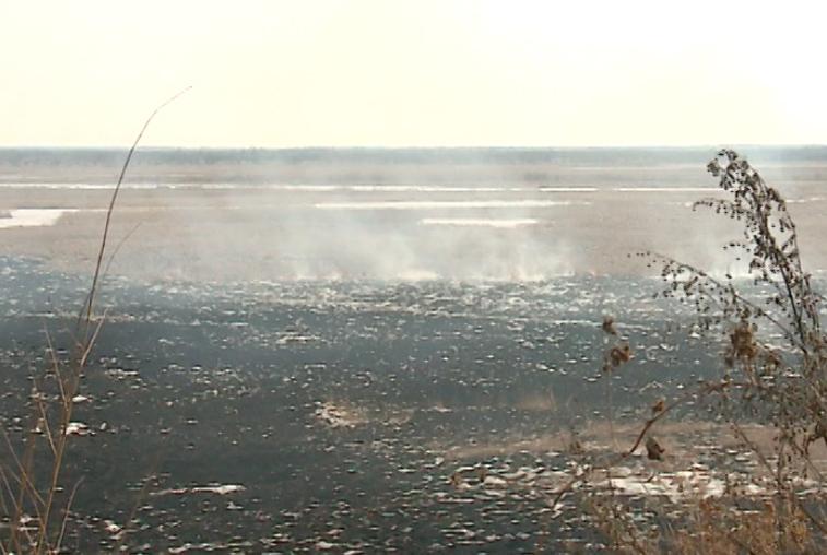 Возгорание сухой травы тушили в окрестностях Благовещенска