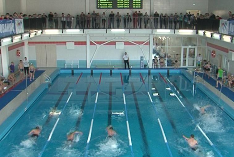 Участниками первого кубка мэра Белогорска по плаванию стали почти 200 спортсменов