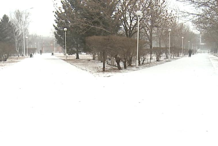 Зима вернулась: В Благовещенске вводится режим повышенной готовности из-за снегопада
