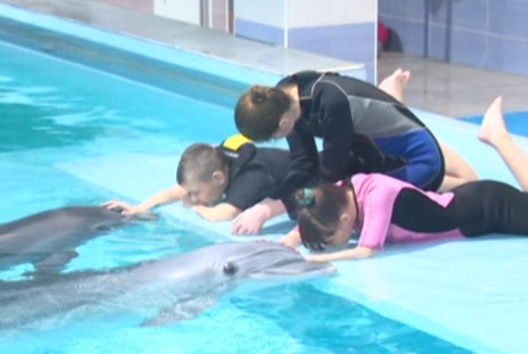 Курс дельфинотерапии в г.Сочи получили в подарок трое маленьких амурчан