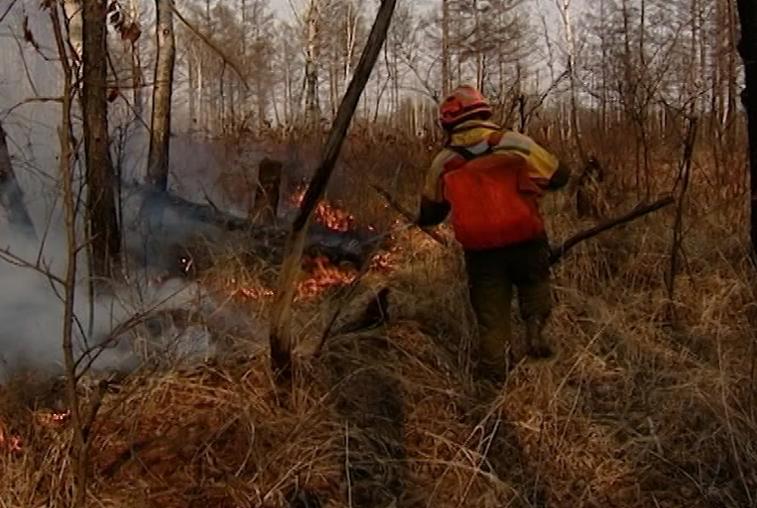 Пожарные борются с возгоранием в Свободненском районе