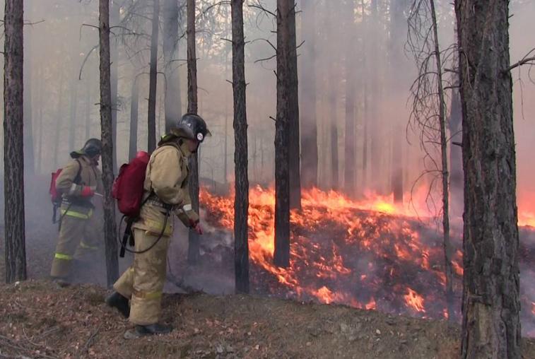 Рослесхоз: Приамурье должно усилить профработу с населением по пожарной безопасности