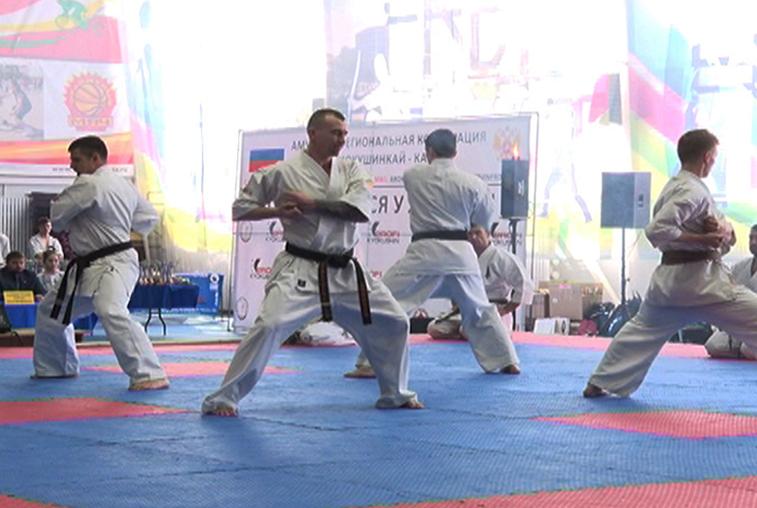 Каратисты провели бои на фестивале спорта и грации в Благовещенске