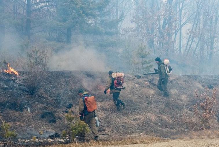 По следам жарких событий в Новинке: пожарные призывают амурчан к здравомыслию