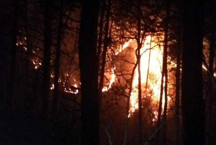 Из санатория «Василёк» эвакуировали больше 100 детей из-за природных пожаров