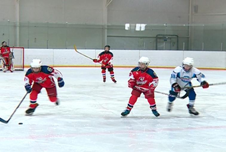 В Приамурье определились участники окружного этапа хоккейного турнира «Добрый лед»