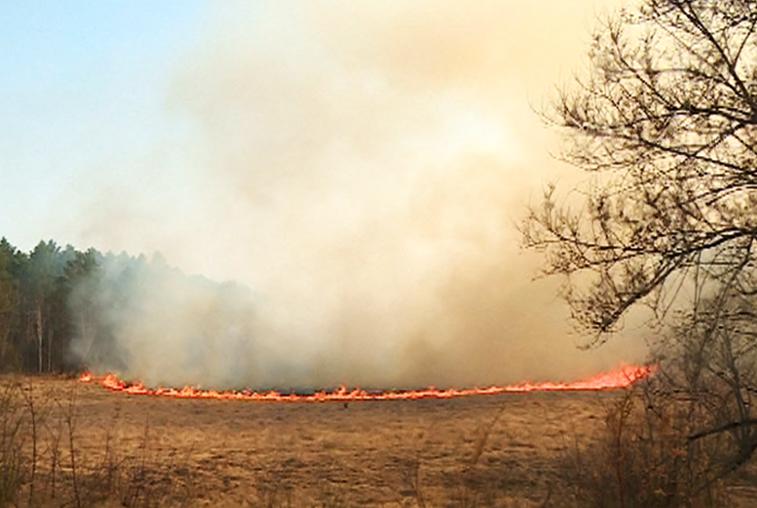 Битва с огнем: поля в районе села Плодопитомник горели в эти выходные