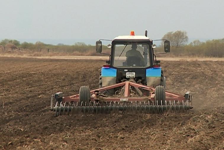 Для ускорения посевной амурским аграриям не хватает дождей