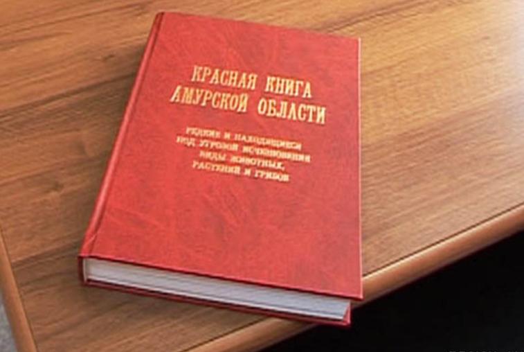 Красную книгу Амурской области сделают электронной