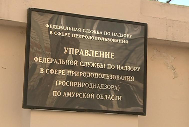 Замначальника амурского управления Росприроднадзора осужден за мошенничество