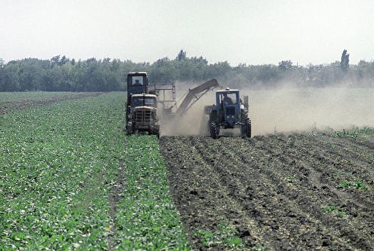 Эксперты Минсельхоза проверяют состояние почв и посевов