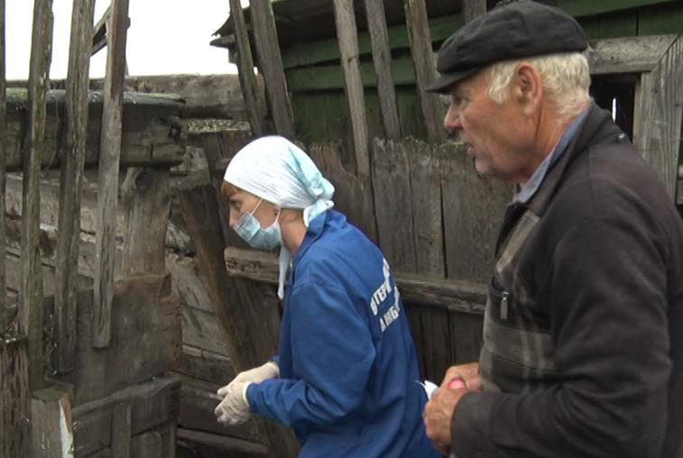 Амурские животноводы не хотят способствовать вакцинации скота