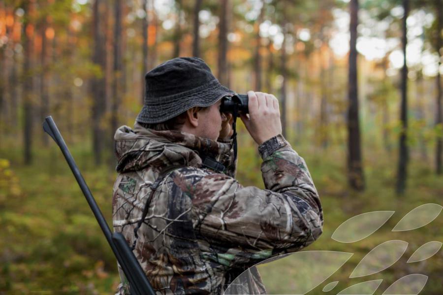 Амурские охотники стремительно разобрали путевки на отстрел кабанов и волков