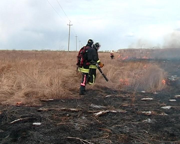 С сегодняшнего дня в области введен особый противопожарный режим