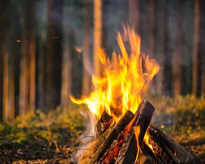На время особого противопожарного режима в Приамурье запрещено разведение огня даже на собственном участке