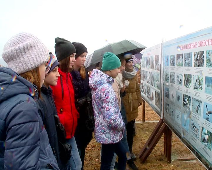 В Бурейском природном парке открылась экотропа «Урочище Симичи»