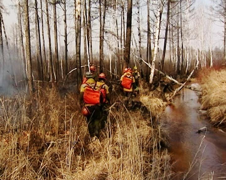 В Приамурье идет подготовка к весеннему пожароопасному сезону