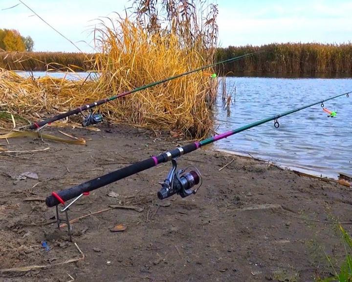 Жители области предлагают отменить весенний запрет на любительскую рыбалку