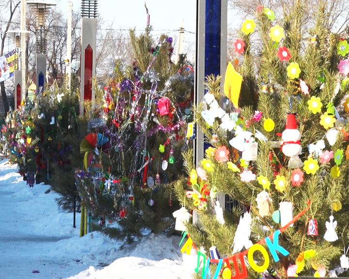 Нарядить лесную красавицу: Жители Ивановки сами создают новогоднее настроение