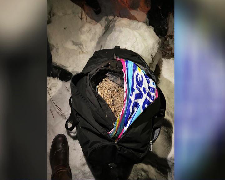 В хранении 10 кг марихуаны подозревают молодого амурчанина
