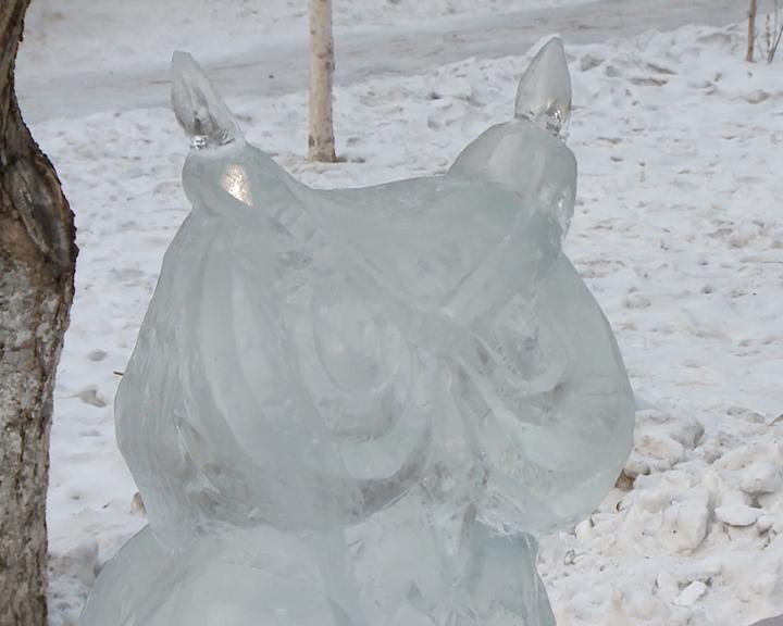 «Волшебный лёд Амура» украсил сквер областного Дома народного творчества