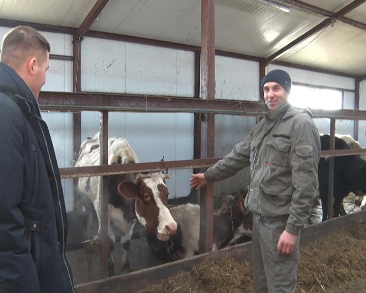 Амурчанин при поддержке государства успешно развивает молочный бизнес на селе
