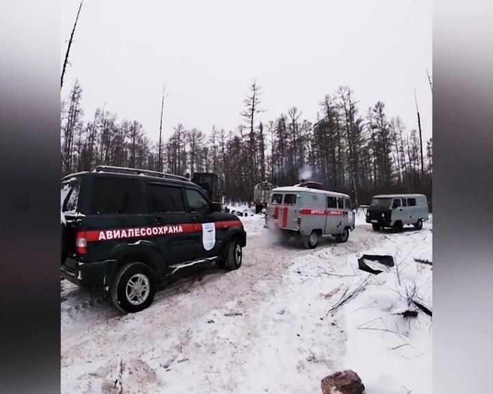 В Магдагачинском районе задержали «чёрных» лесорубов