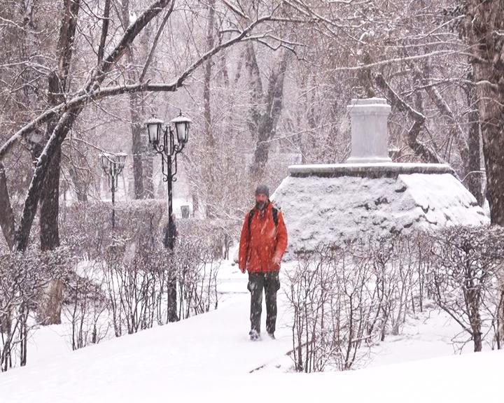 Приамурье накрыл снегопад и сильный ветер