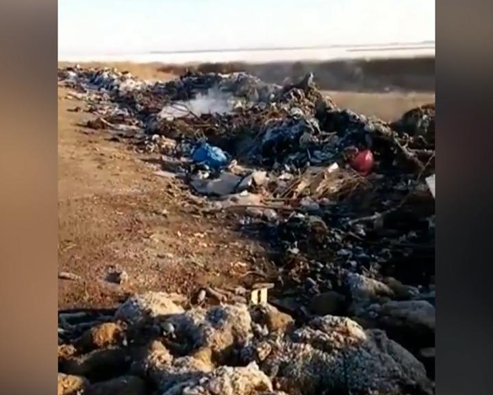 Жители Толстовки жалуются на стихийную свалку у дороги
