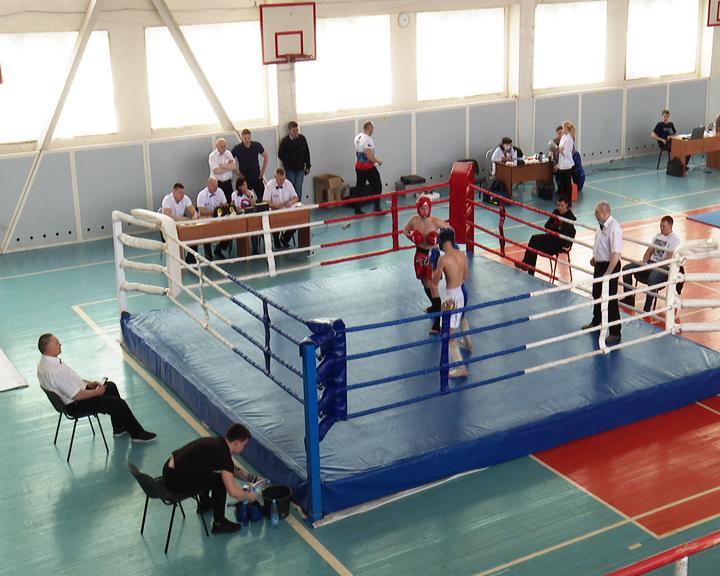 Областной турнир по кикбоксингу провели в закрытом режиме