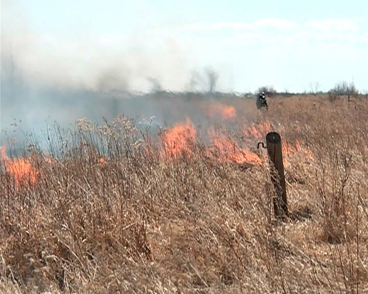 В Приамурье начался сезон лесных пожаров
