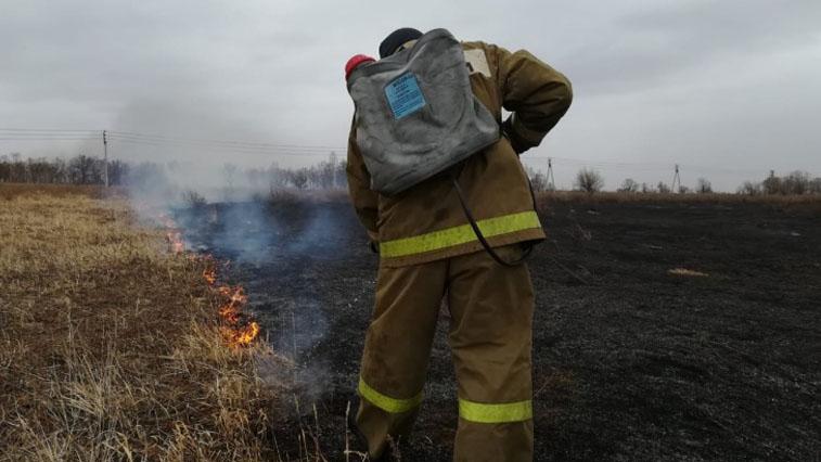 10 природных пожаров потушили в Амурской области за сутки
