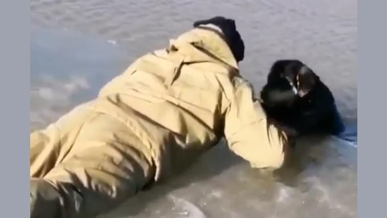 Трое мужчин спасли собаку на реке Амур