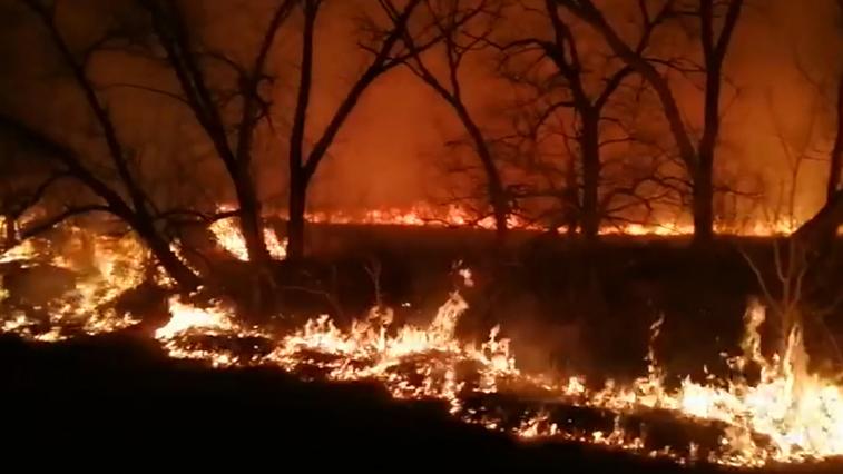 60 человек тушили природный пожар в Благовещенском районе