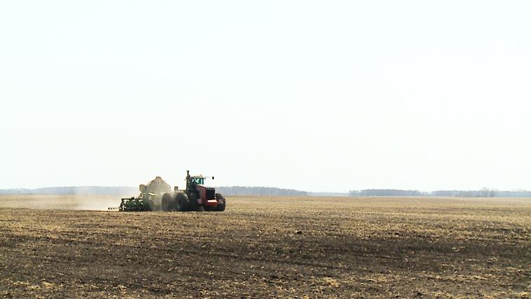 Серьёзные планы на сезон: В Приамурье приступили к севу пшеницы