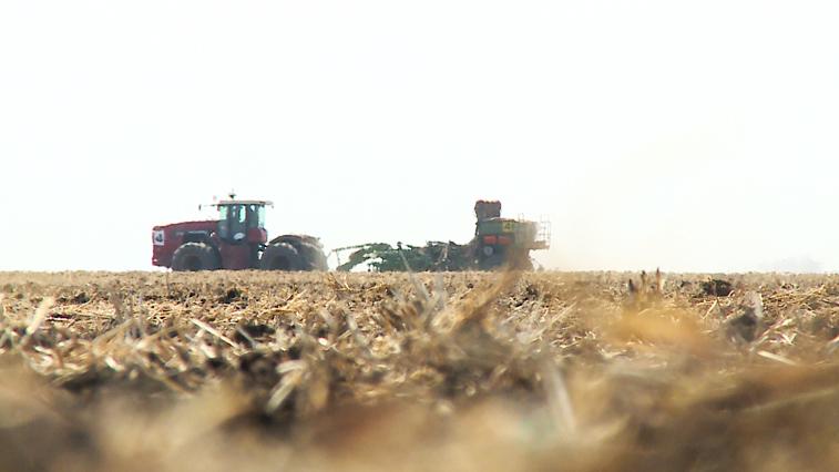 Больше 1 млн 200 тысяч гектаров планируют засеять в этом сезоне в Приамурье