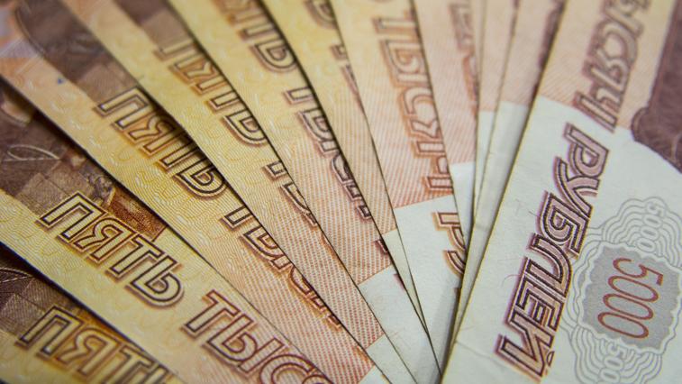 Амурский избирком присоединился ко всероссийской акции ЦИК и собрал почти 240 тысяч рублей