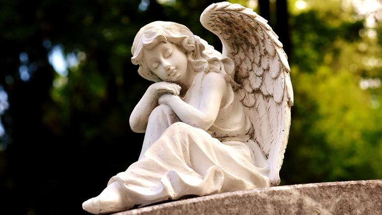 Жителей области призывают не посещать кладбища в родительский день