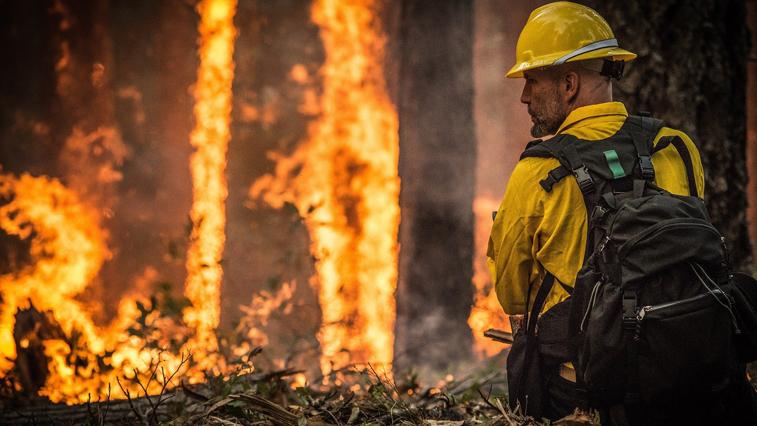 В Приамурье за день ликвидировали 4 природных пожара