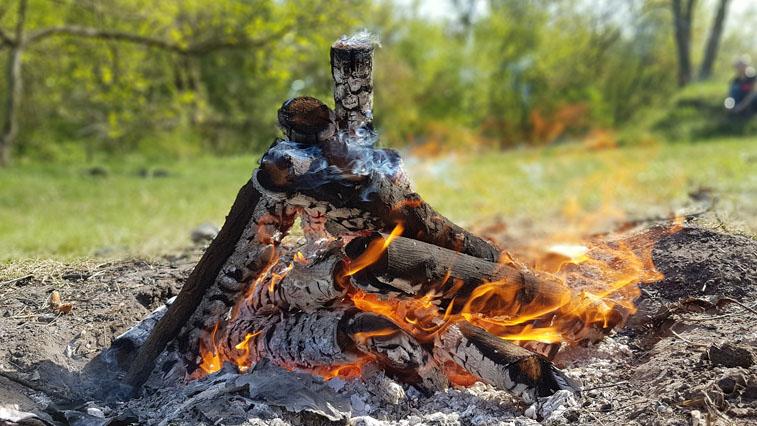 В майские праздники в Приамурье усилят патрулирование в лесах